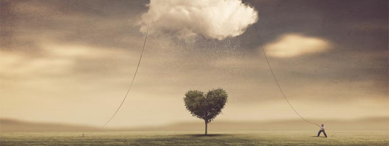Mindfulness y Autocompasión: El arte de cuidarse a uno mismo